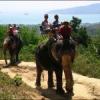 Activities in and around Phuket