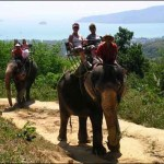 Activities in and around Phuket